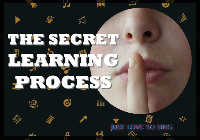 The Secret Learning Process